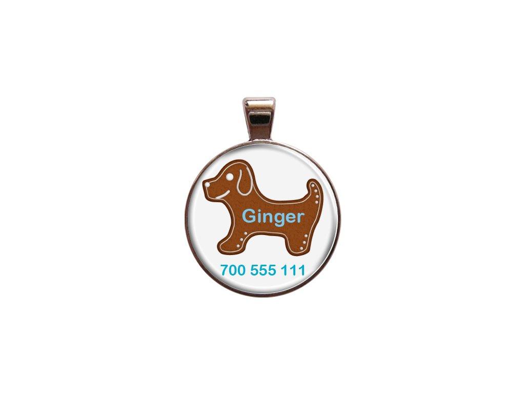 Ginger znamka pro psa psi telefonni cislo jmeno ryti kovova s plemenem demeven obojek se jmenem silueta