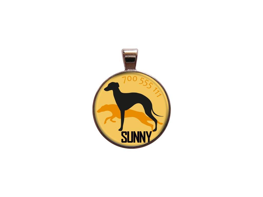 Sunny znamka pro psa psi telefonni cislo jmeno ryti kovova s plemenem demeven obojek se jmenem silueta