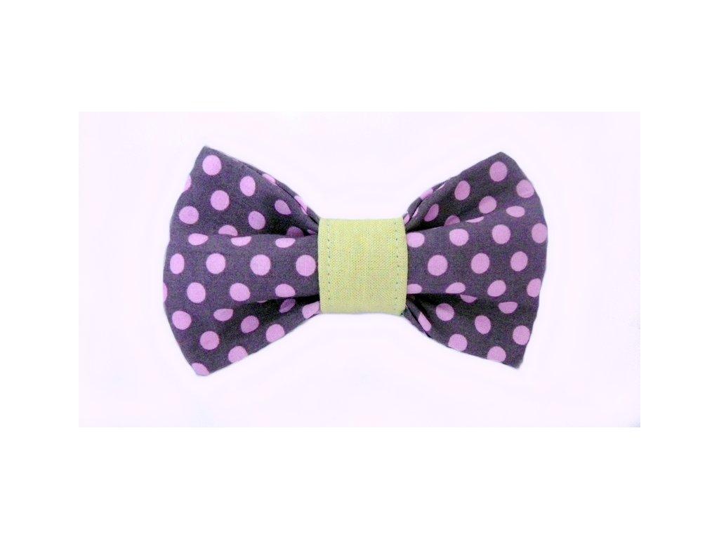 vyr 105Paris motylek pro psy obojek obojky s motylkem psi krasny stylovy collar dog bow tie beautiful stylish handmade luxusni