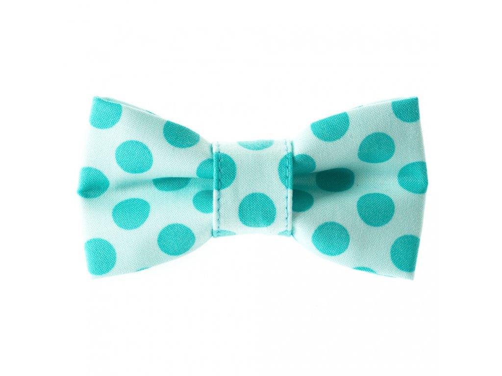 Sea motylek na obojek pro psa svatecni stylovy modry s puntiky
