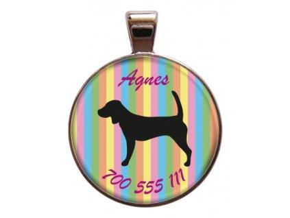 Agnes znamka pro psa psi telefonni cislo jmeno ryti kovova s plemenem demeven obojek se jmenem