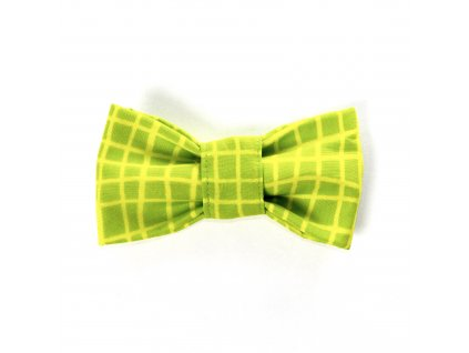 salvador motýlek motýl pro psa na obojek zeleny krasny jedinecny stylovy demeven