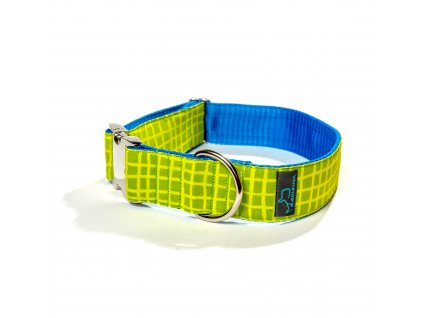 salvador obojek velky xl pro psa psy krasny stylovy zeleny modry demeven