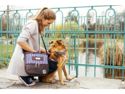 Babylon sada venceni vycvik psa psi obojek voditko stylovy krasny ruzoy hnedy fialovy kabelka pamlskovnik vycvikova vesta sukne