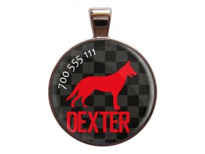 Dexter znamka pro psa psi telefonni cislo jmeno ryti kovova s plemenem demeven obojek se jmenem
