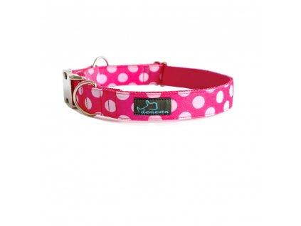 Hillier Obojky pro psy obojek krasny stylovy designovy demeven s kovovou sponou dog collar beautiful stylish pink violet ruzovy fialovy psi obojek