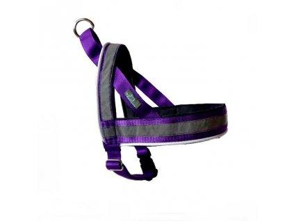 postroj fialovy shop svitici norsky obojek reflexni s odrazkou nocni venceni obojek USB dobijeci nabijeci psi pro psa demeven ksiry safety