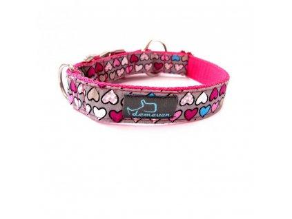 Lady Obojky pro psy obojek krasny stylovy designovy demeven s kovovou sponou dog collar beautiful stylish pink violet ruzovy fialovy psi obojek