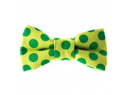 gemini motylek na obojek pro psa svatecni stylovy zeleny s puntiky