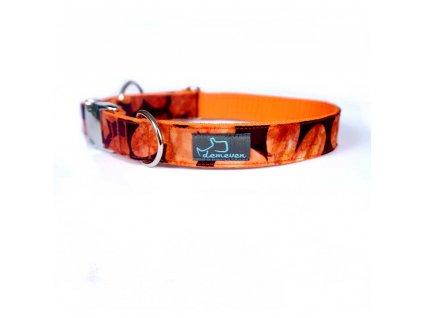 Mapleen Obojky pro psy obojek krasny stylovy designovy demeven s kovovou sponou dog collar beautiful stylish cerveny oranzovy psi obojek
