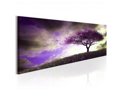 Fialovy-strom---90x30-cm-na-Deminas