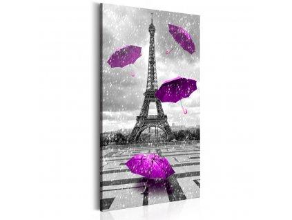 Pariz---Purpurove-destniky---70x140-cm-na-Deminas