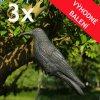 plasic ptaku 3x