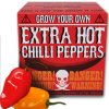 3293 grow your own chilli