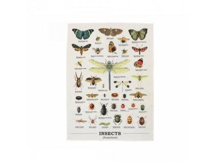 12677 utierka s hmyzom