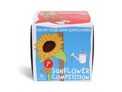 11402 sow and grow soutez o nejvetsi slnečnicami