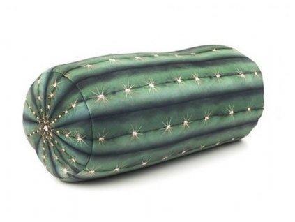 Relaxacne-vankus --- kaktus-na-Deminas