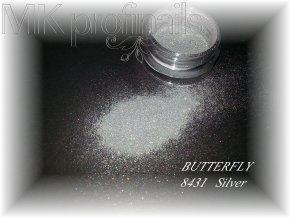 BUTTERFLY  Silver  Třpytky a Glitry
