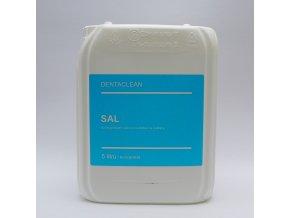 DentaClean Sal 5L