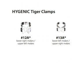 hygenic tiger