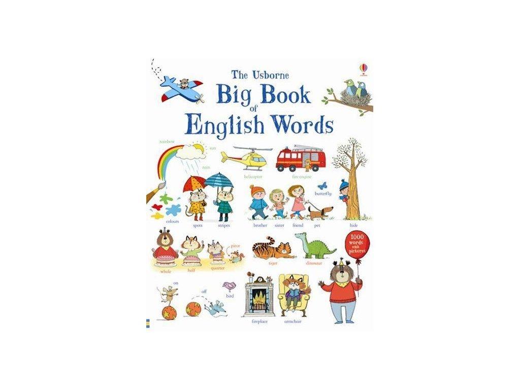 THE USBORNE BIG BOOK OF ENGLISH WORDS