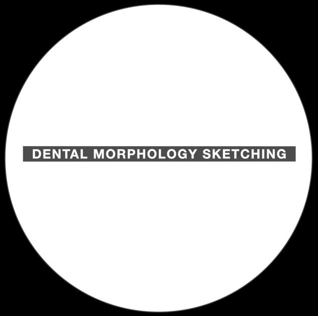 Dental Sketching