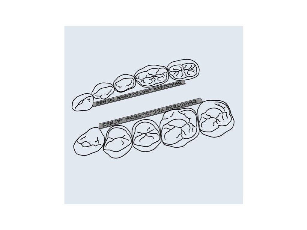 sketching shop.001 (kopie)