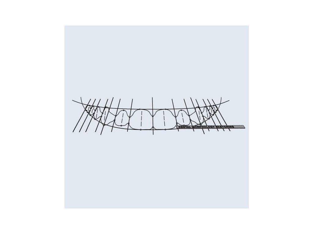 DSD Sketching Tool.001