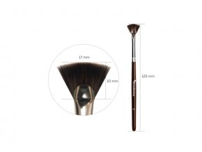 brow xenna stetec c5