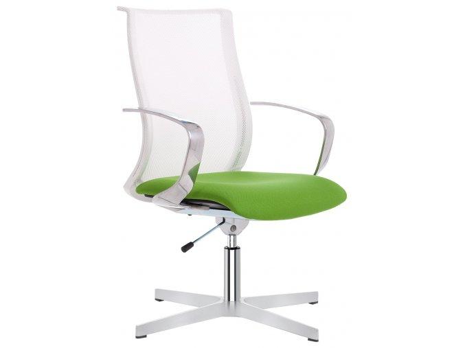 Zdravotní balanční židle Sky B WH Flex - 1