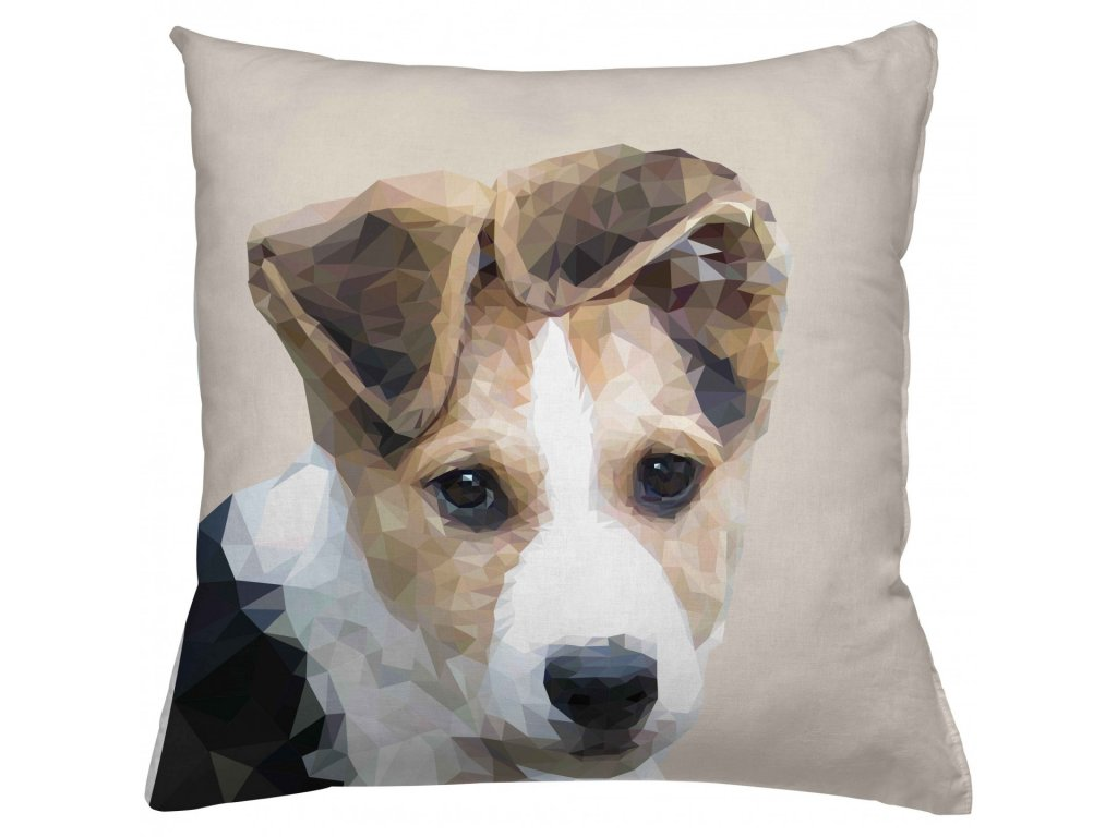 Polštář Brown Dog