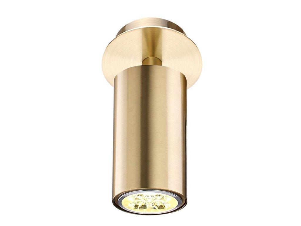 Zlaté kovové nástěnné světlo Fiona