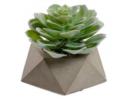 Umělá květina LaForma Echeveria glauca