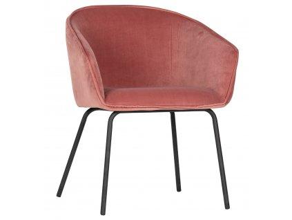 Set dvou růžových sametových čalouněných jídelních židlí Susan s kovovou podnoží