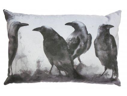 Černobílý polštář s havrany Crow 40x60 cm