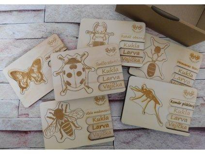 puzzle hmyz