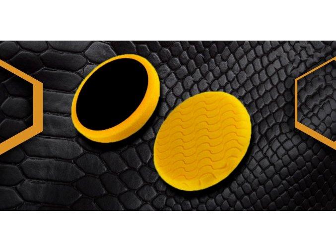 honey snake