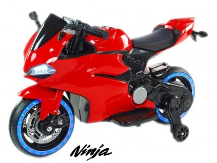 Závodní motorka 1