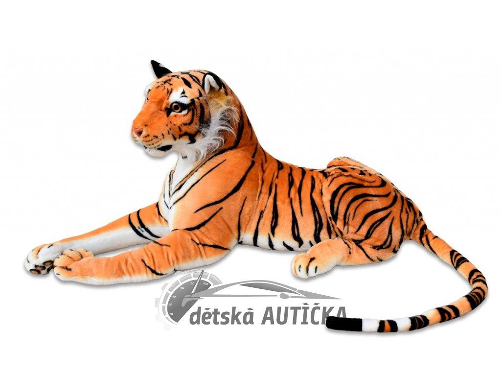 Tygr střední oranž 1