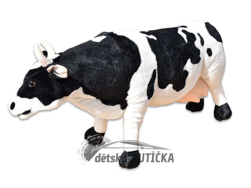 Kráva stojící 1