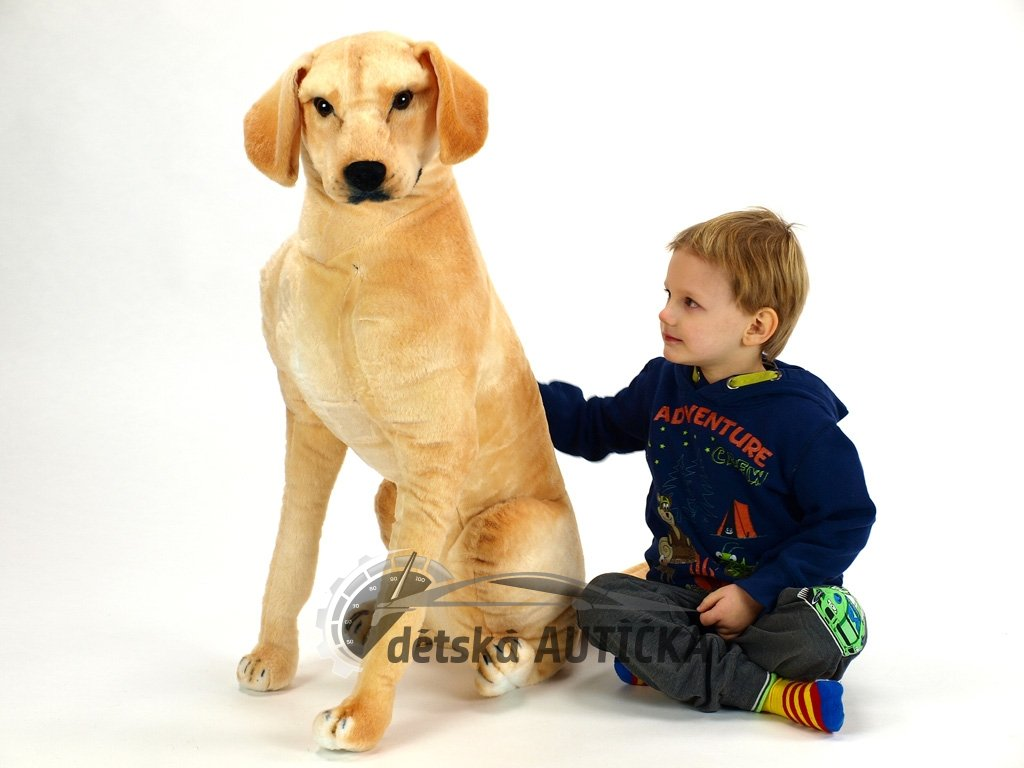 Plyšový sedící pes Labrador, výška 83 cm,