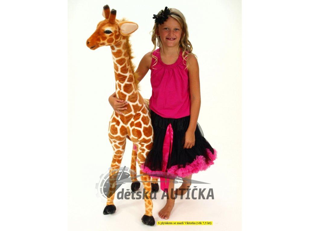 Plyšová žirafa stojící, výšky 137 cm