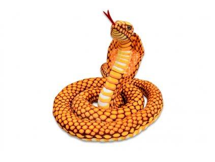 Kobra zlatá 1