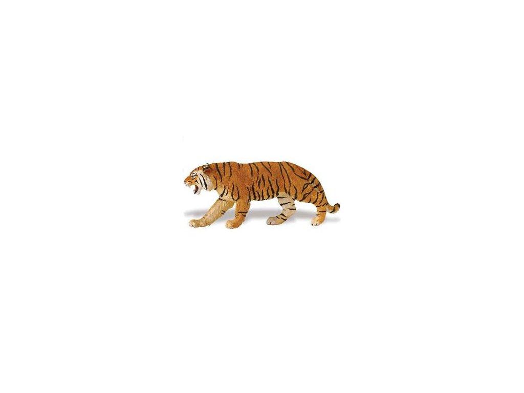 4331 tygr bengalsky