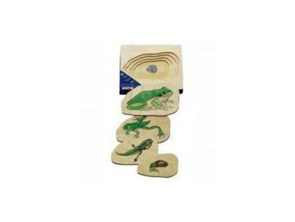 686 beleduc vyvojove vrstvene puzzle zabka