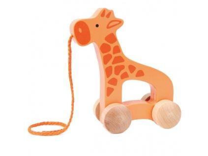 Hape Drevená ťahacie žirafa