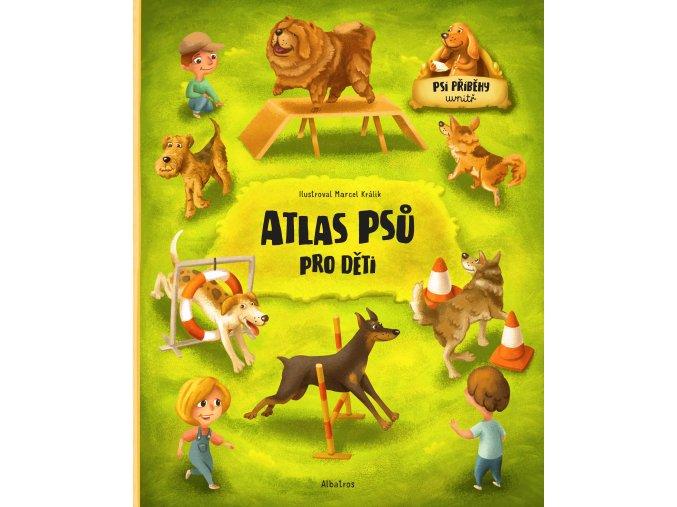 0064639928 Atlas psu t