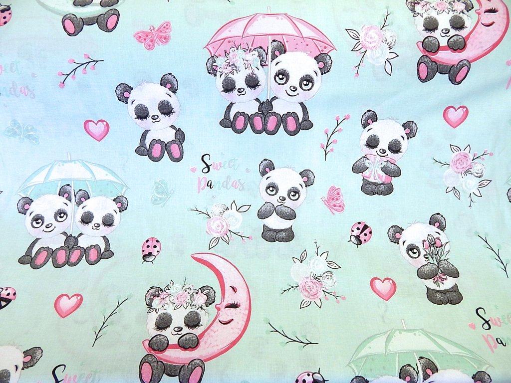 medvídek panda na mentolové