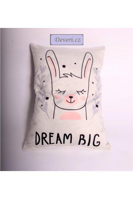 Dekorační polštářek Dream big 31x45cm bílý