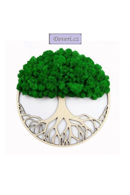 Obraz strom s mechem 30cm zelený (2)